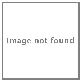 Logo PSG 2015 - Zlatan Ibrahimovic