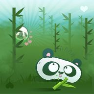 Panda so cute