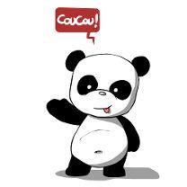 Panda coucou