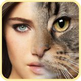 Animal Faces Morphing